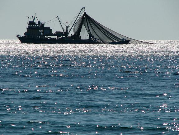 08_31_2012_trawler-net