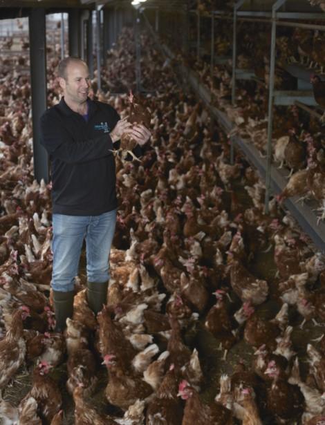 Beter Boeren: David Janssen