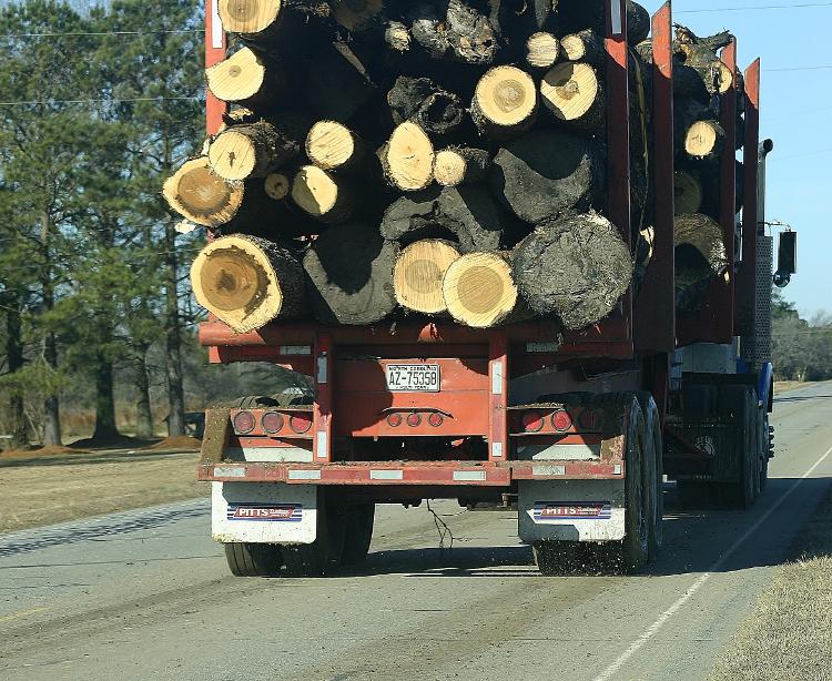 Amerikaanse truck op weg naar een houtpelletfabriek