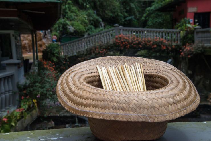 web 42 consument Straw-hat-straws-flower