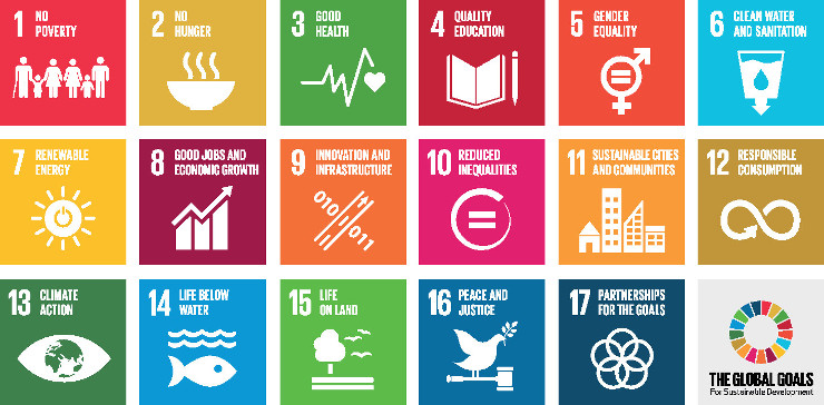 1_TheGlobalGoals_Icons_Color