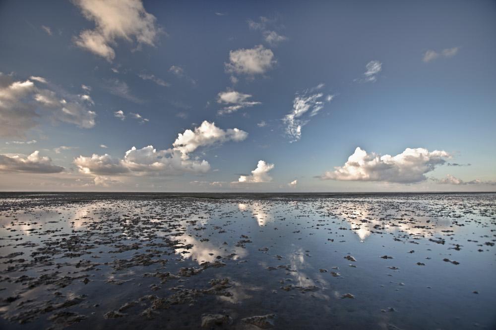 Beelden: Holland, natuur in de Delta