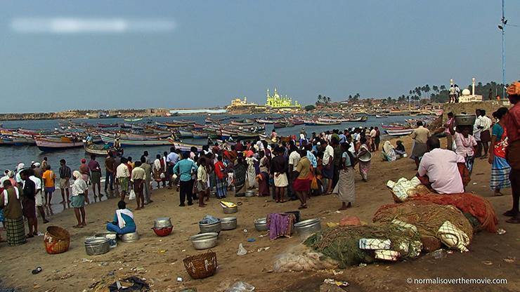 De grenzen zijn bereikt: de zeeën raken leeg, de grondstoffen op