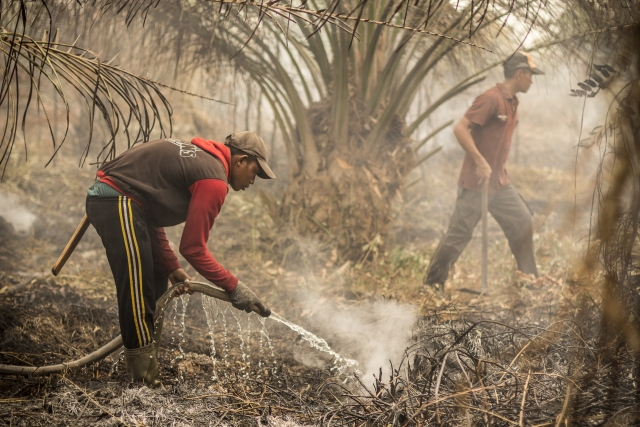Foto: Victor Barro/Milieudefensie