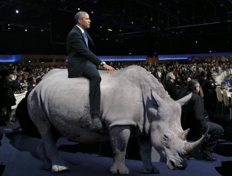 obama rhino the onion