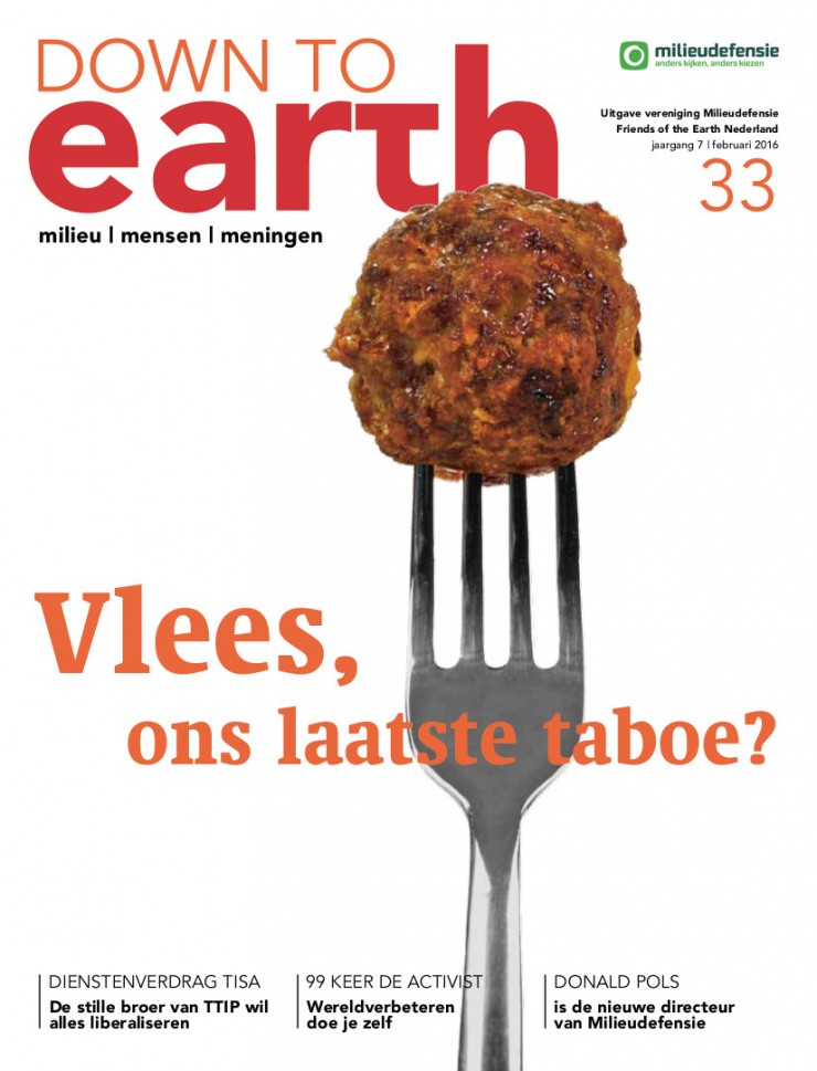 Cover van Down to Earth 33 (februari 2016)