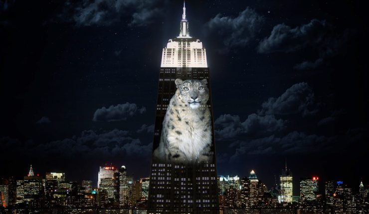 media racing extinction.jpgracing extinction DOCUMENTARY-EMPIRE-STATE-slide-53TT-superJumbo