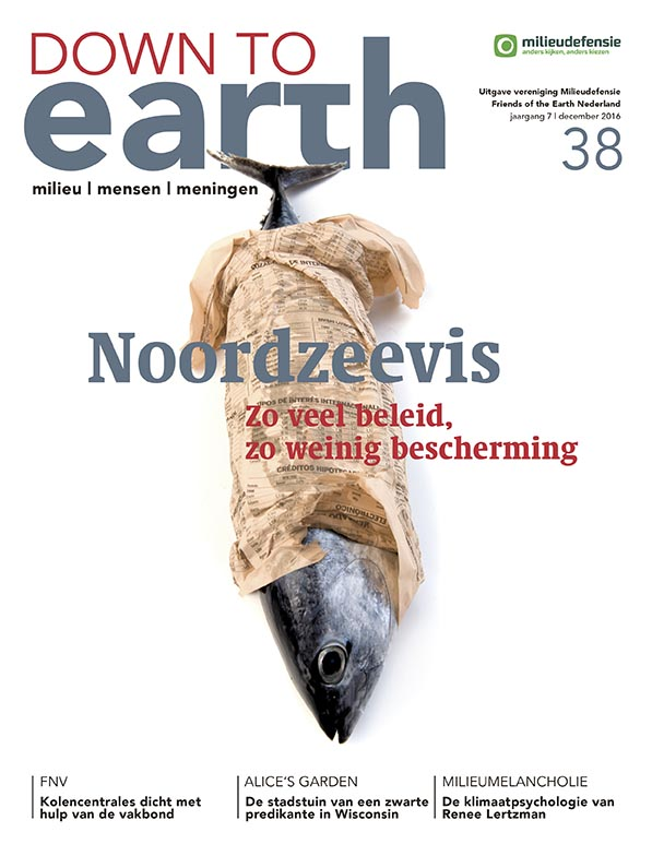 Cover van — Down to Earth 38 (december 2016)