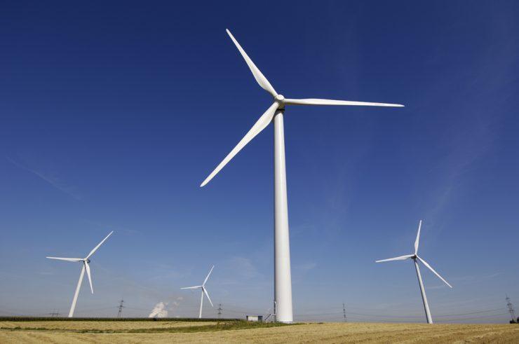 windmolenbeleid