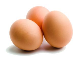 eieren boerenkool quiche deltaplan biodiversiteitsherstel