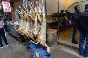 Dierenmarkt