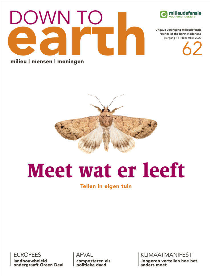 Cover van Down to Earth 62
