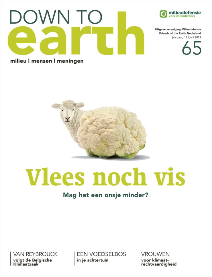Cover van Down to Earth 65